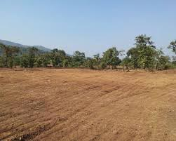 Residential Land / Plot for Sale in Mumbai - 26000 Sq.ft.