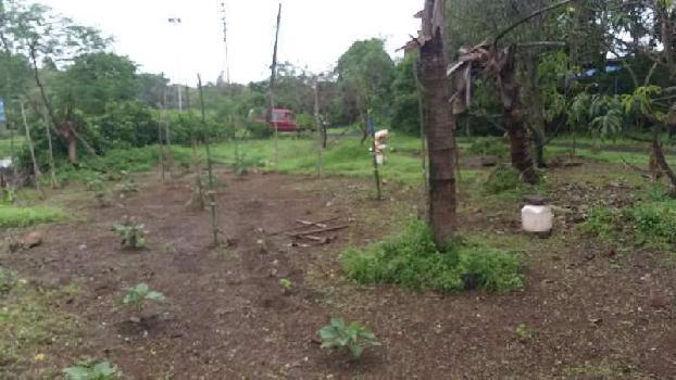 5000 Sq.ft. Residential Plot for Sale in Agarsure, Alibag, Raigad
