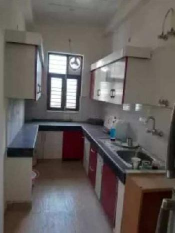 2 BHK 1000 Sq.ft. Builder Floor for Rent in Sector 51 Gurgaon