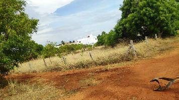 13 Cent Residential Plot for Sale in Tenkasi, Tirunelveli