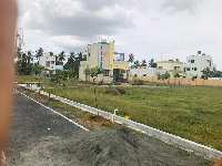 871 Sq.ft. Residential Plot for Sale in Periyanaickenpalayam, Coimbatore