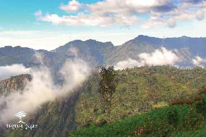 1500 Sq.ft. Residential Plot for Sale in Lovedale Junction, Ooty