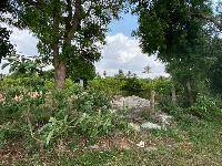 7 Acre Farm Land for Sale in Chikkaballapur, Bangalore
