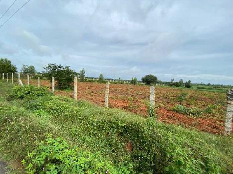 163 Guntha Farm Land for Sale in Doddaballapur, Bangalore