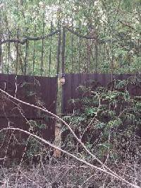 1066 Sq. Yards Residential Plot for Sale in Saket, Neb Sarai, Saket