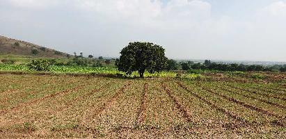 52 Acre Farm Land for Sale in Parner, Ahmednagar