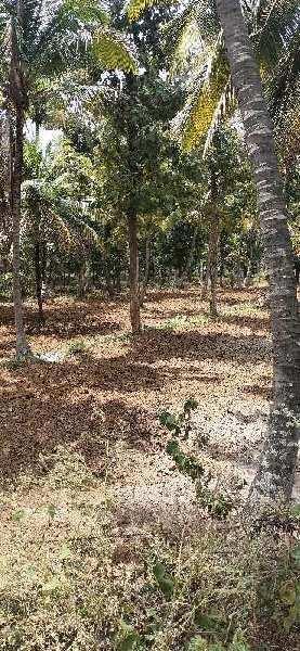 5 Ares Farm Land for Sale in Kanakapura Road, Bangalore