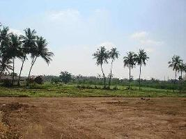 22000 Sq.ft. Commercial Land for Sale in Vedant Nagar, Aurangabad