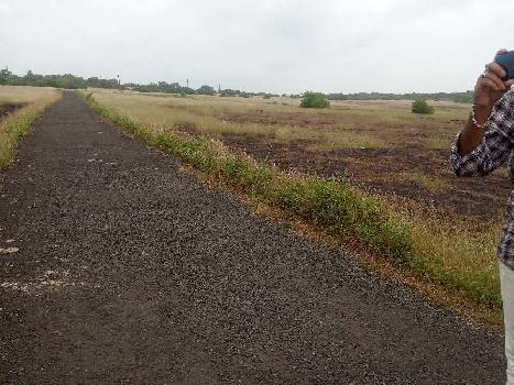40 Guntha Farm Land for Sale in Malvan, Sindhudurg