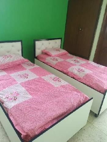 3 BHK 1500 Sq.ft. Residential Apartment for PG in Block A Sector 63, Noida