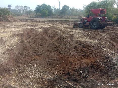 56000 Sq.ft. Farm Land for Sale in Alibag, Raigad