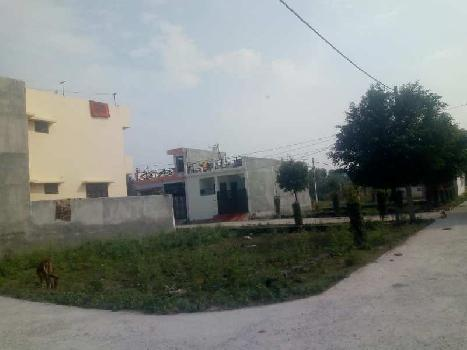 1250 Sq.ft. Residential Plot for Sale in Gomti Nagar, Lucknow