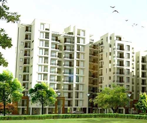 3 BHK 1685 Sq.ft. Residential Apartment for Sale in Haibatpur Road, Dera Bassi