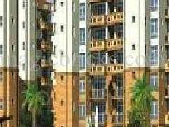 4 BHK 1700 Sq.ft. Residential Apartment for Rent in Sector 44 Noida