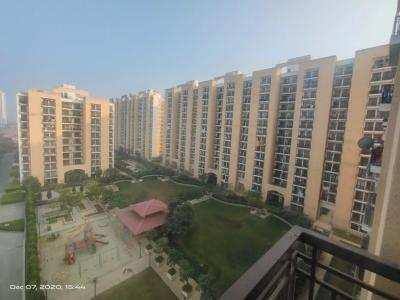3 BHK 1560 Sq.ft. Residential Apartment for Sale in Sector 81 Gurgaon