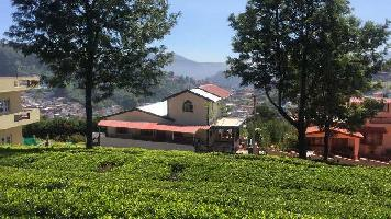 8 Cent Residential Plot for Sale in Coonoor, Ooty
