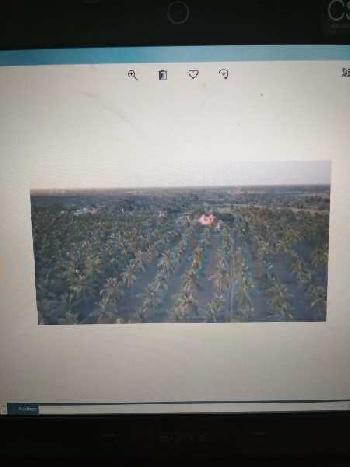 62 Acre Farm Land for Sale in Maduravayol, Chennai