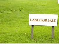185 Bigha Farm Land for Sale in Jalor