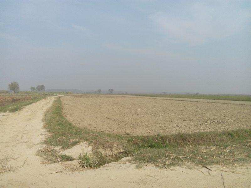 Residential Plot for Sale in Panchkula - 500 Sq. Yards