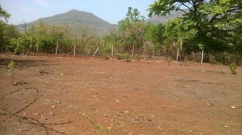 Residential Plot for Sale in Chandigarh - 175 Sq. Yards