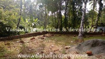 7 Cent Residential Plot for Sale in Pottammal, Kozhikode