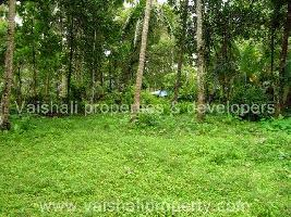 20 Cent Commercial Land for Sale in Karaparamba, Kozhikode