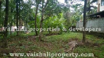 6.5 Cent Residential Plot for Sale in Pottammal, Kozhikode
