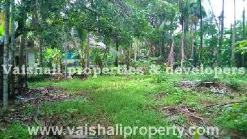 8 Cent Residential Plot for Sale in Pottammal, Kozhikode