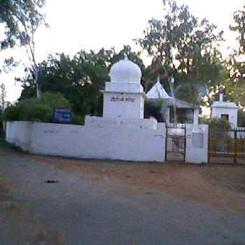 335 Acre Farm Land for Sale in Beohari, Shahdol