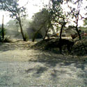 62 Acre Farm Land for Sale in Sehore