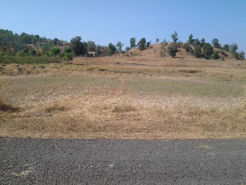 Residential Plot for Sale in Gomti Nagar, Lucknow - 3200 Sq. Feet