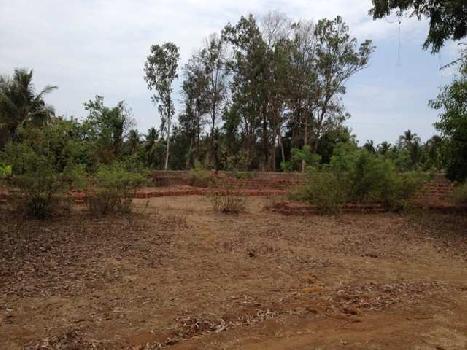 7 Guntha Residential Plot for Sale in Bhatye, Ratnagiri