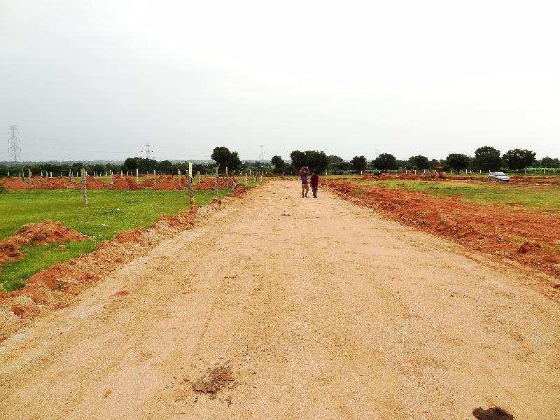 Residential Plot for Sale in Shad Nagar, Hyderabad - 325 Sq. Yards