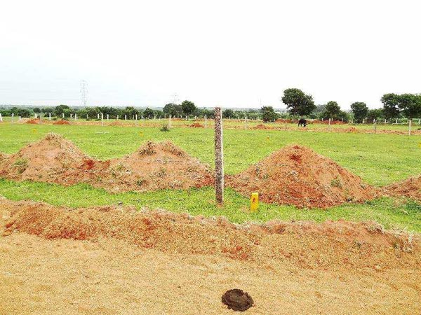 Residential Plot for Sale in Shad Nagar, Hyderabad - 470 Sq. Yards