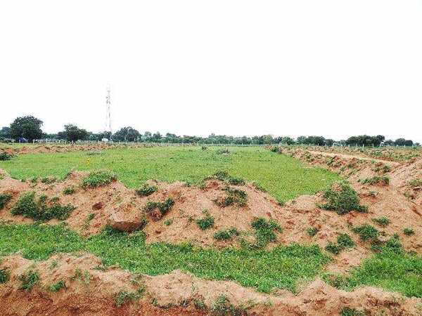 Residential Plot for Sale in Shad Nagar, Hyderabad - 225 Sq. Yards