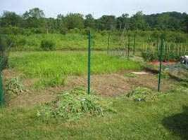Residential Land / Plot for Sale in Sector Xu- 2, Greater Noida - 120 Sq. Meter