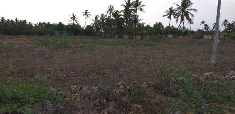 Commercial Lands /Inst. Land for Sale in Veraval, Gir Somnath - 3.5 Bigha