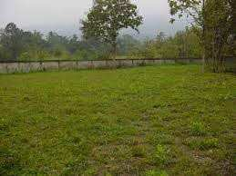 Residential Land / Plot for Sale in Sector 21A, Faridabad - 1000  Sq. Yards