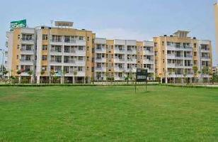 3 BHK Flat for Rent in Ambala City, Ambala