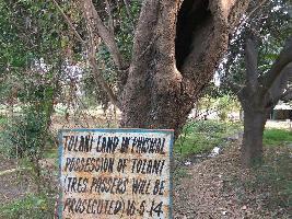 7 Acre Farm Land for Sale in Vasant Kunj Sector A, Vasant Kunj