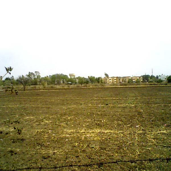 Residential Land / Plot for Sale in Bilaspur - 2200 Sq.ft.