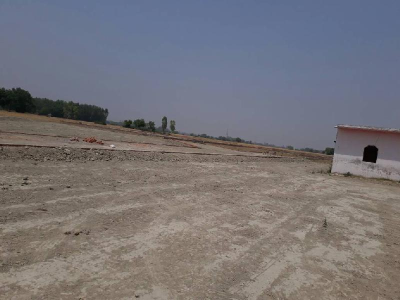 Residential Land / Plot for Sale in Bilaspur - 1250 Sq.ft.