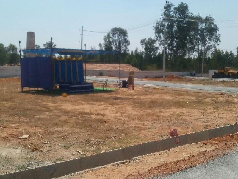 Commercial Land for Sale in Bilaspur - 450 Sq. Feet