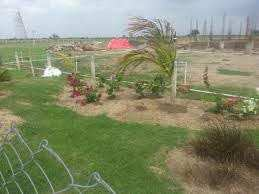 1600 Sq. Feet Commercial Lands & Plots for Rent in Bopal, Ahmedabad West - 1600 Sq.ft.