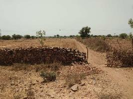 37 Bigha Farm Land for Sale in Nainwa, Bundi
