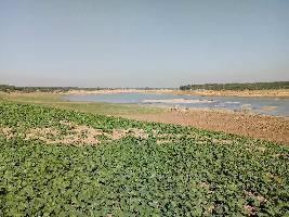22 Bigha Farm Land for Sale in Nainwa, Bundi