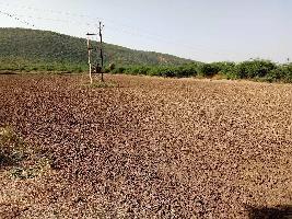 26 Bigha Farm Land for Sale in Lakheri, Bundi