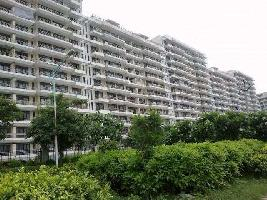 2 BHK Flat for Rent in Kundli TDI City, Sonipat