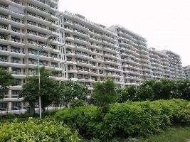 3 BHK Flat for Rent in Kundli TDI City, Sonipat