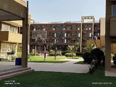 2 BHK 700 Sq.ft. Residential Apartment for Rent in Sector 70A Gurgaon